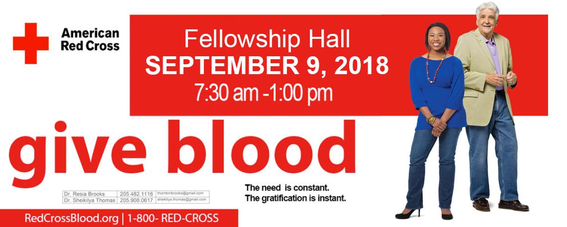 blood-fall18